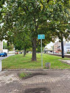 Hundewiese Augustusburger Straße - Zieschestraße